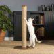 когтеточка для кошек